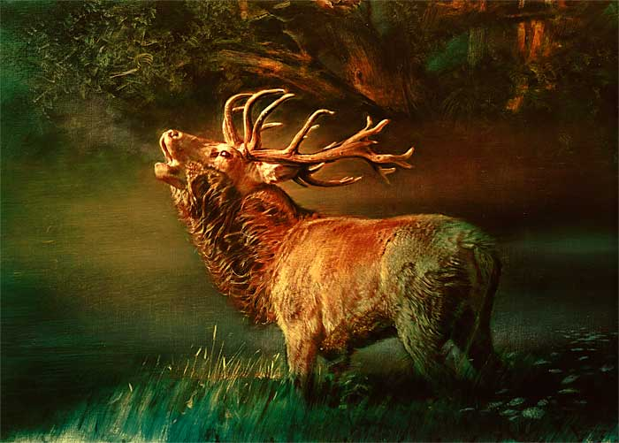 Robert Schoeller Painting: Roaring Stag Wildlife Painting TH015